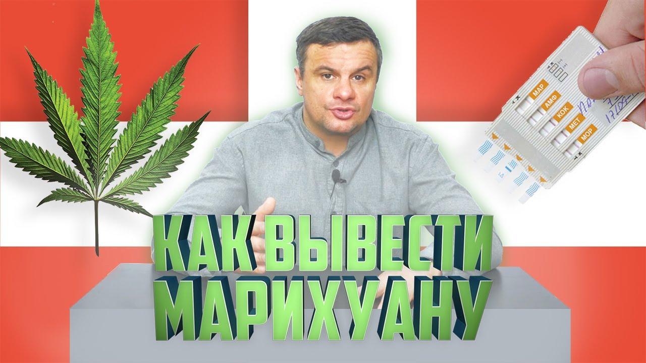 Как вывести марихуану тест семечки от конопли накуривают